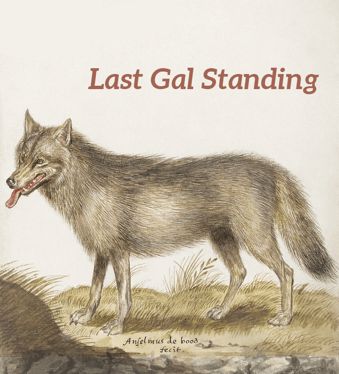 """Illustration from the public domain: Wolf, Canis lupus (1596–1610) by Anselmus Boëtius de Boodt. Text had been added in a ruddy pink color matching the wolf's tongue reading """"Last Gal Standing,"""" referring to Mindy Aronoff, BAVC's longest staff member."""